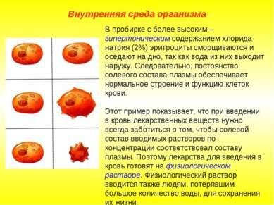 Внутренняя среда организма В пробирке с более высоким – гипертоническим содер...