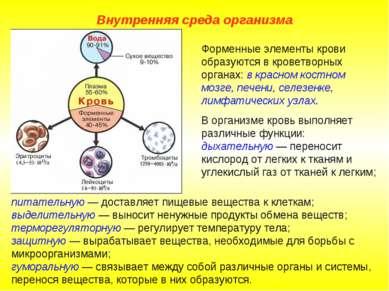 Внутренняя среда организма питательную — доставляет пищевые вещества к клетка...