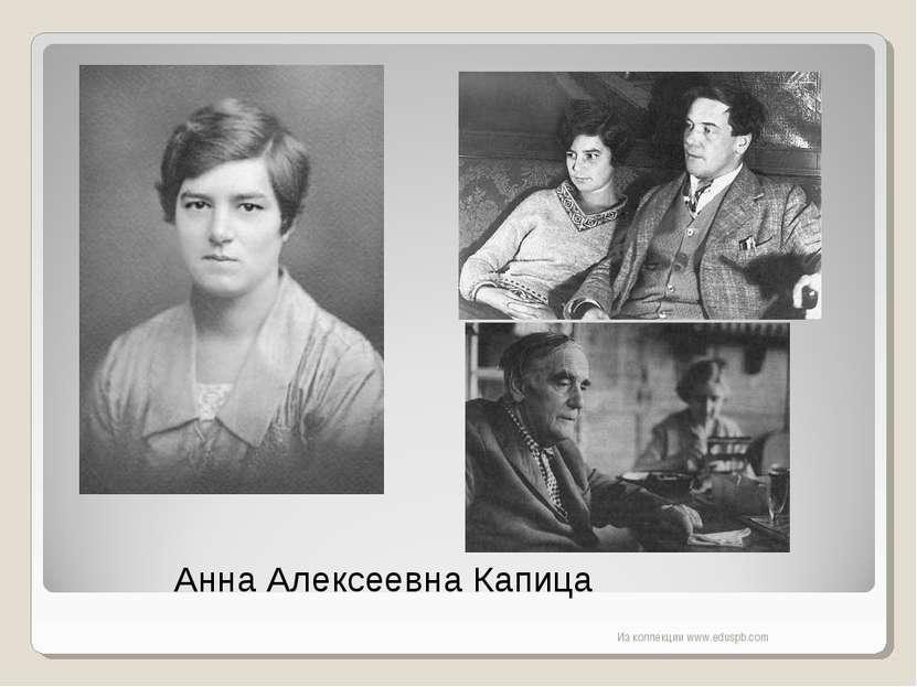 Анна Алексеевна Капица Из коллекции www.eduspb.com Из коллекции www.eduspb.com