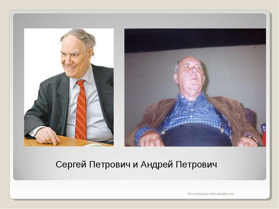 Сергей Петрович и Андрей Петрович Из коллекции www.eduspb.com Из коллекции ww...