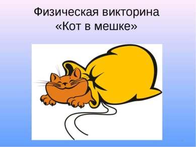 * Физическая викторина «Кот в мешке»