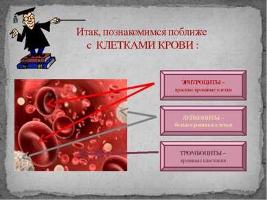 Итак, познакомимся поближе с КЛЕТКАМИ КРОВИ : ЭРИТРОЦИТЫ – красные кровяные к...