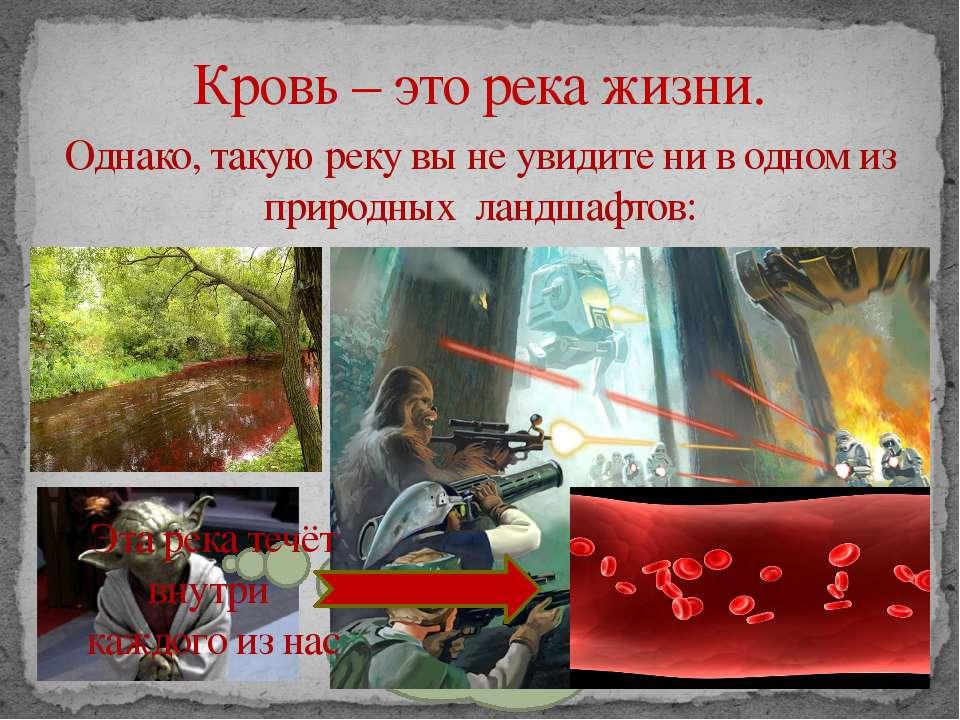 Кровь – это река жизни. Однако, такую реку вы не увидите ни в одном из природ...