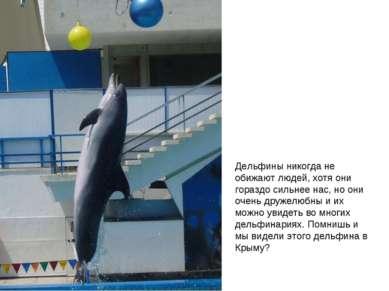 Дельфины никогда не обижают людей, хотя они гораздо сильнее нас, но они очень...