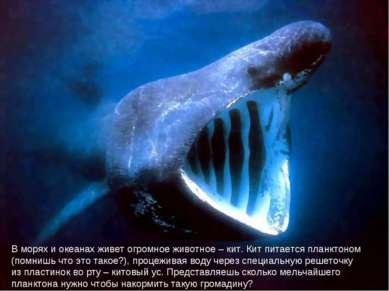 В морях и океанах живет огромное животное – кит. Кит питается планктоном (пом...