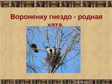 Вороненку гнездо - родная хата. * *
