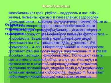 Фикобилины Открытые тетрапиррольные структуры Фикобилины (от греч. phýkos – в...