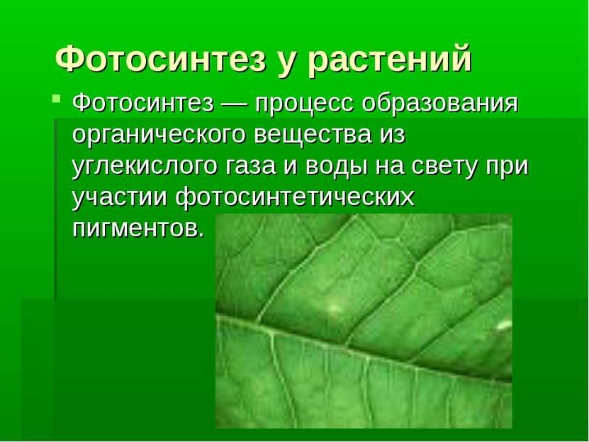 Фотосинтез у растений Фотосинтез — процесс образования органического вещества...