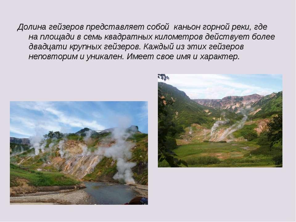 Долина гейзеров представляет собой каньон горной реки, где на площади в семь ...