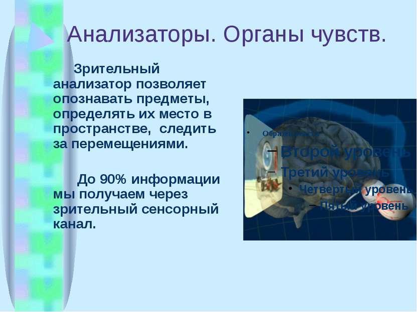 Анализаторы. Органы чувств. Зрительный анализатор позволяет опознавать предме...