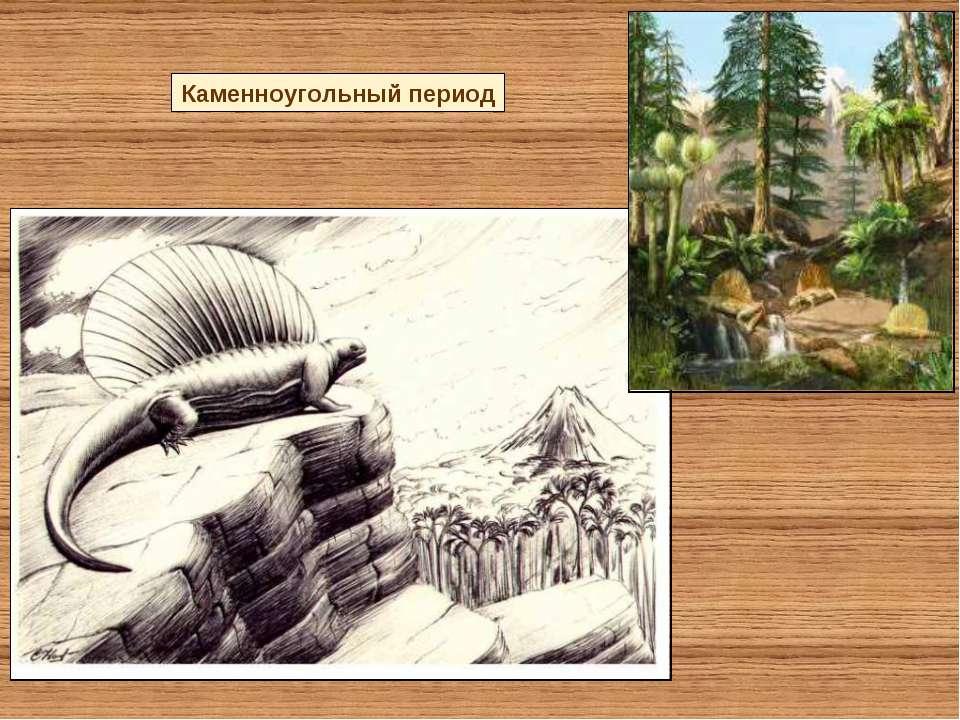 Каменноугольный период
