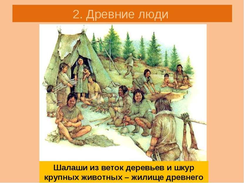 2. Древние люди Шалаши из веток деревьев и шкур крупных животных – жилище дре...