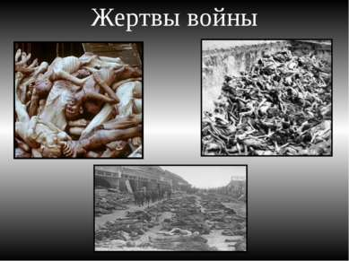 Жертвы войны