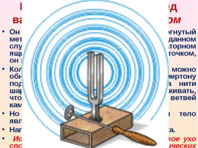 Прибор, находящийся перед вами называется камертоном Он представляет собой из...