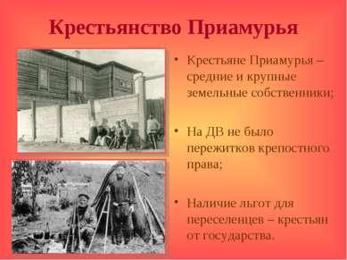 Крестьянство Приамурья Крестьяне Приамурья – средние и крупные земельные собс...