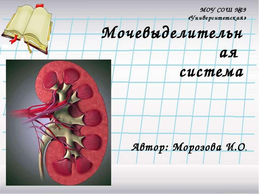 Мочевыделительная система Автор: Морозова И.О. МОУ СОШ №29 «Университетская»