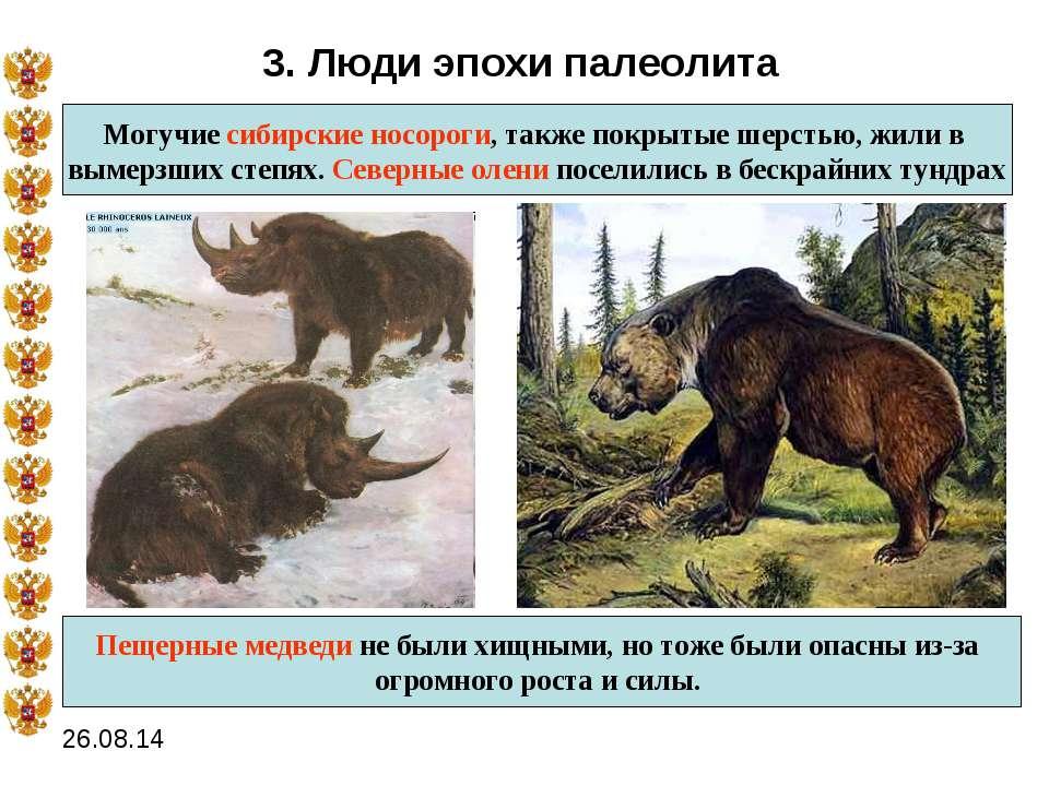 3. Люди эпохи палеолита Могучие сибирские носороги, также покрытые шерстью, ж...