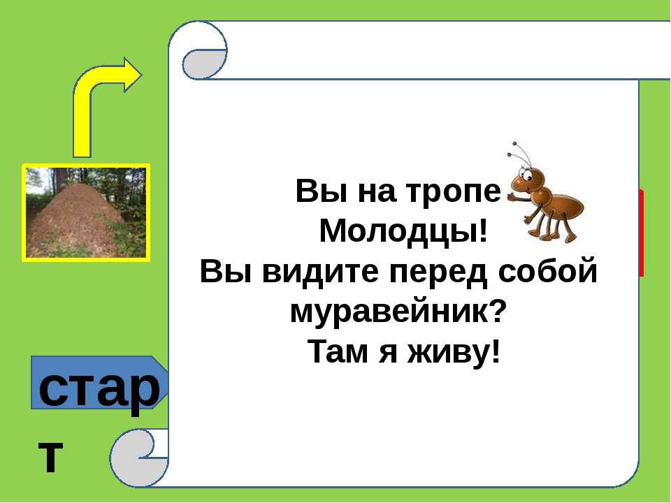 старт ? ? Это надо знать Вы на тропе! Молодцы! Вы видите перед собой муравейн...