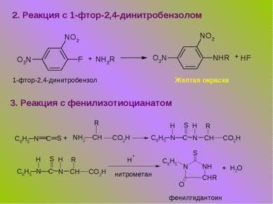 2. Реакция с 1-фтор-2,4-динитробензолом + + 1-фтор-2,4-динитробензол Желтая о...