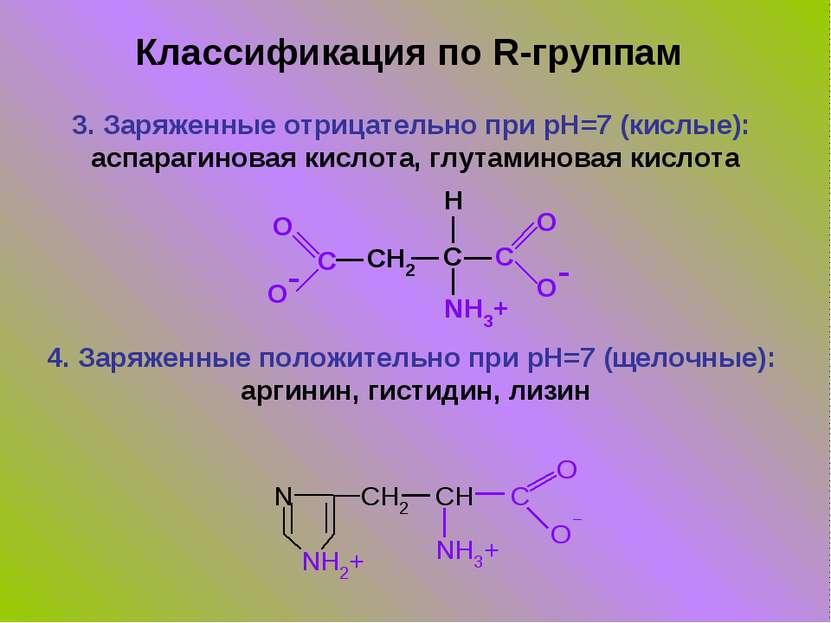 3. Заряженные отрицательно при pH=7 (кислые): аспарагиновая кислота, глутамин...