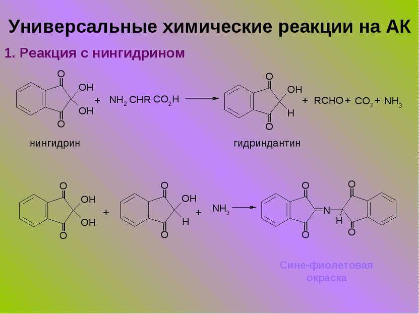Универсальные химические реакции на АК 1. Реакция с нингидрином + + + + нинги...