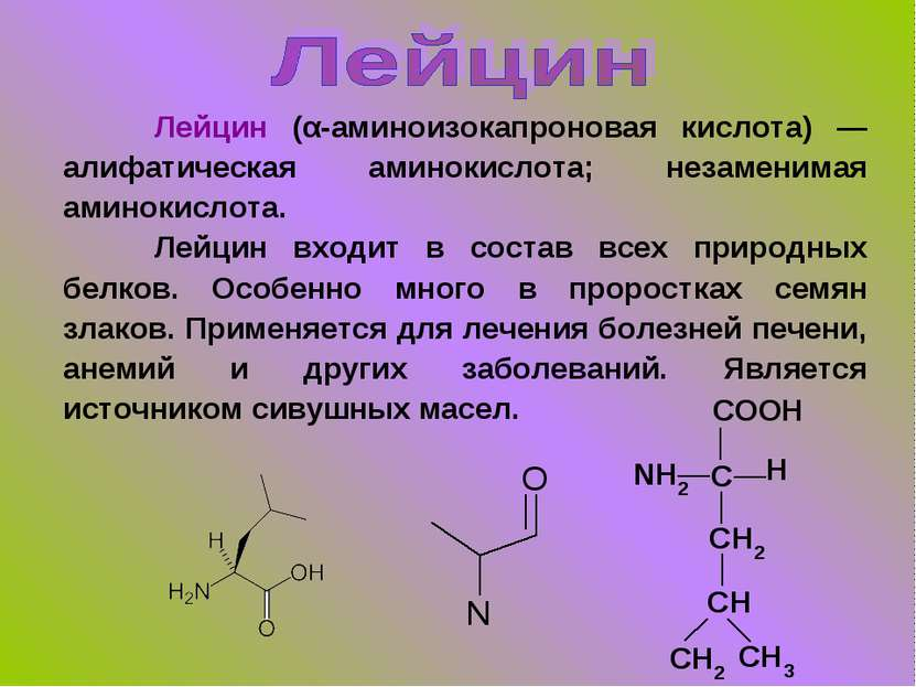 Лейцин (α-аминоизокапроновая кислота) — алифатическая аминокислота; незаменим...