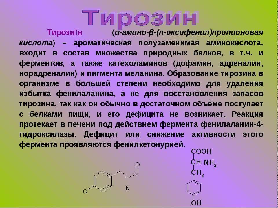 Тирози н (α-амино-β-(п-оксифенил)пропионовая кислота) – ароматическая полузам...