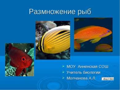 Размножение рыб МОУ Анненская СОШ Учитель биологии Молчанова А.Л.