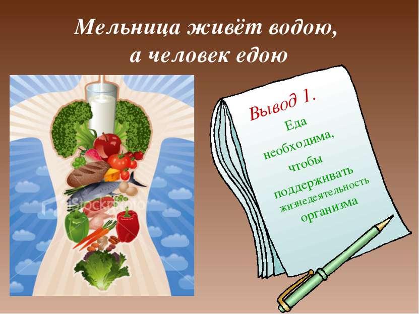 Мельница живёт водою, а человек едою Вывод 1. Еда необходима, чтобы поддержив...