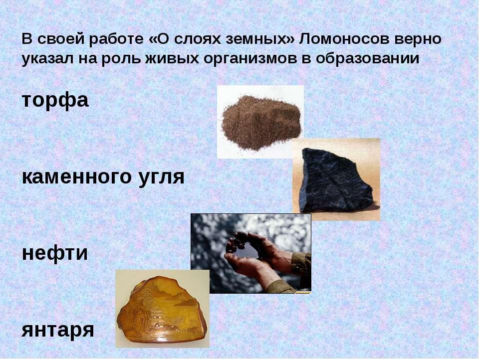 В своей работе «О слоях земных» Ломоносов верно указал на роль живых организм...