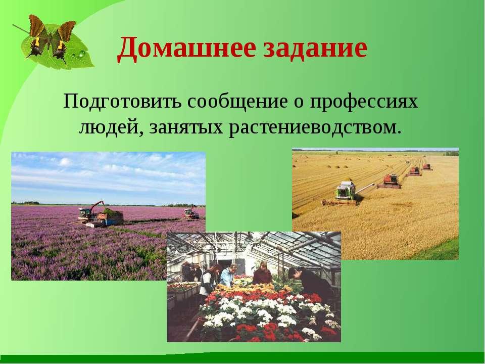 Домашнее задание Подготовить сообщение о профессиях людей, занятых растениево...