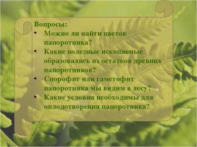 Вопросы: Можно ли найти цветок папоротника? Какие полезные ископаемые образов...