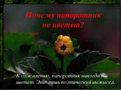 К сожалению, папоротник никогда не цветет. Это лишь поэтический вымысел. Поче...
