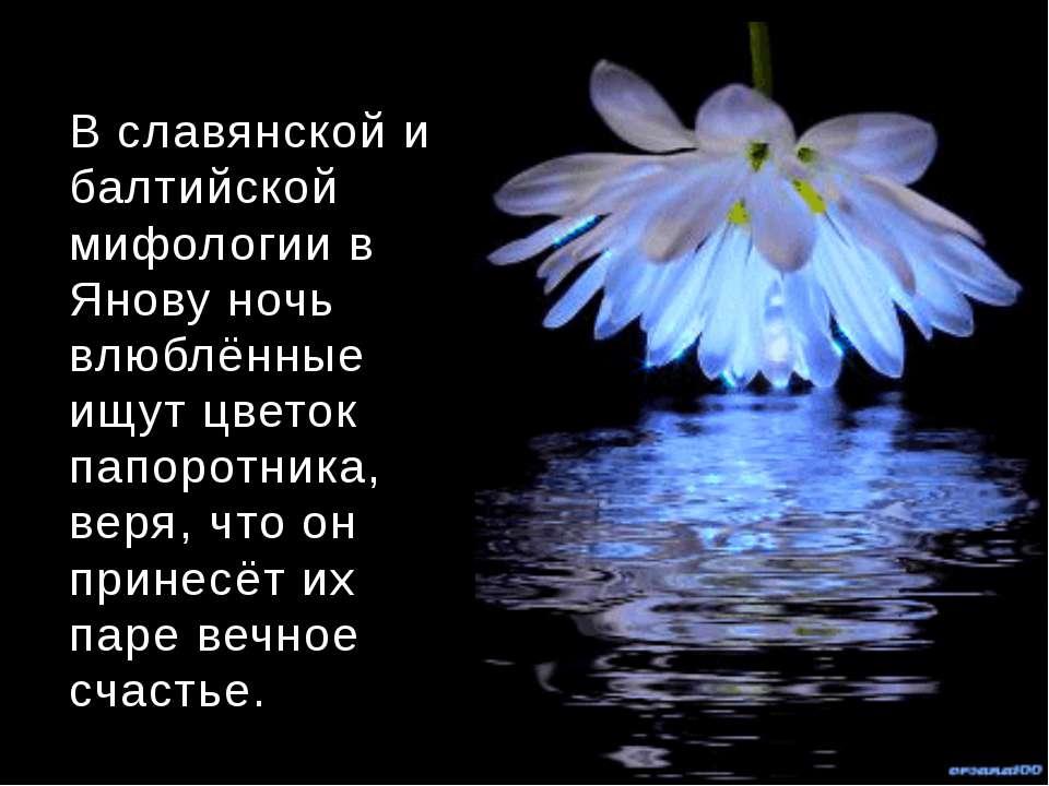 В славянской и балтийской мифологии в Янову ночь влюблённые ищут цветок папор...