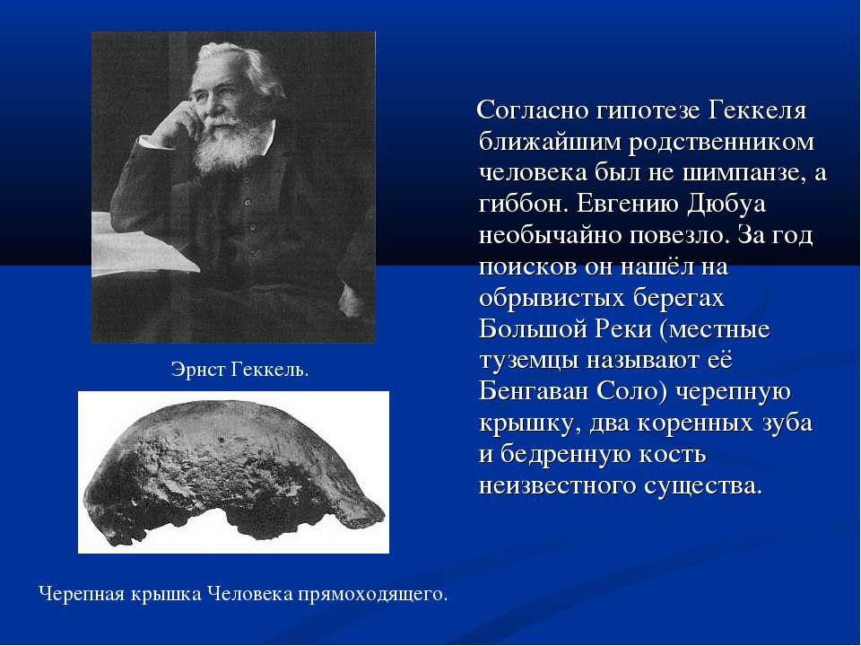 Согласно гипотезе Геккеля ближайшим родственником человека был не шимпан...