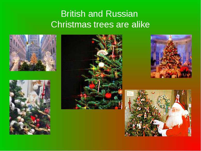 British and Russian Christmas trees are alike