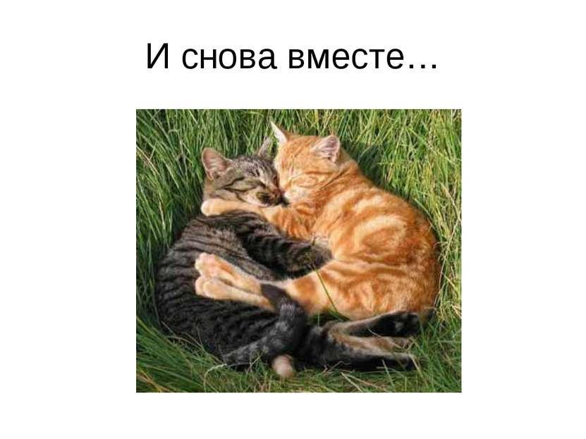 И снова вместе…