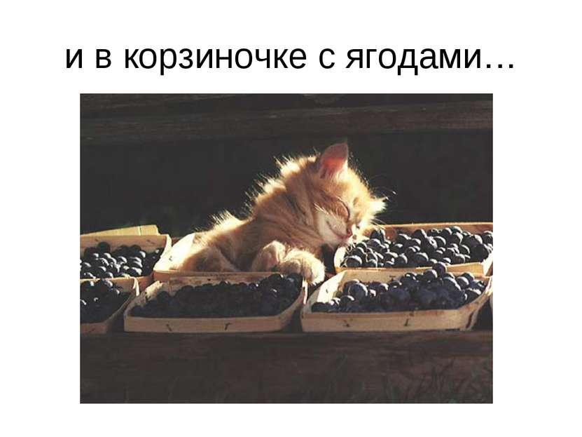 и в корзиночке с ягодами…