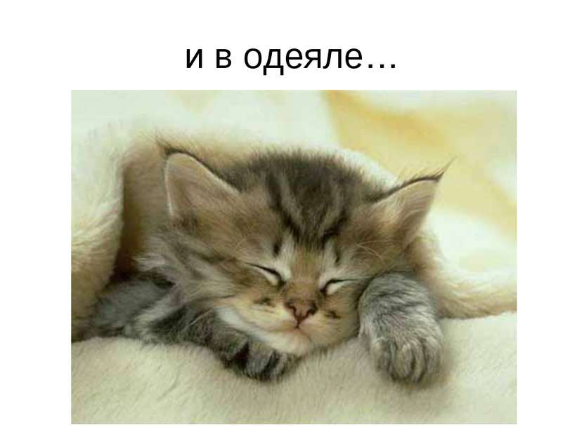 и в одеяле…