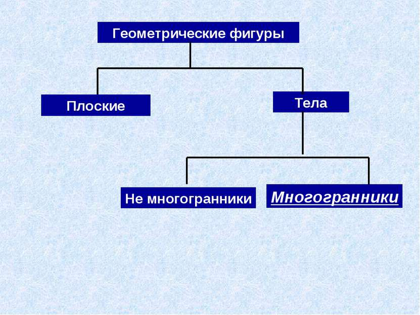 Многогранники Тела Геометрические фигуры Плоские Не многогранники