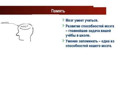 www.themegallery.com Company Logo Память Мозг умеет учиться. Развитие способн...