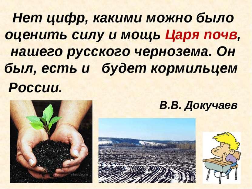 Нет цифр, какими можно было оценить силу и мощь Царя почв, нашего русского че...