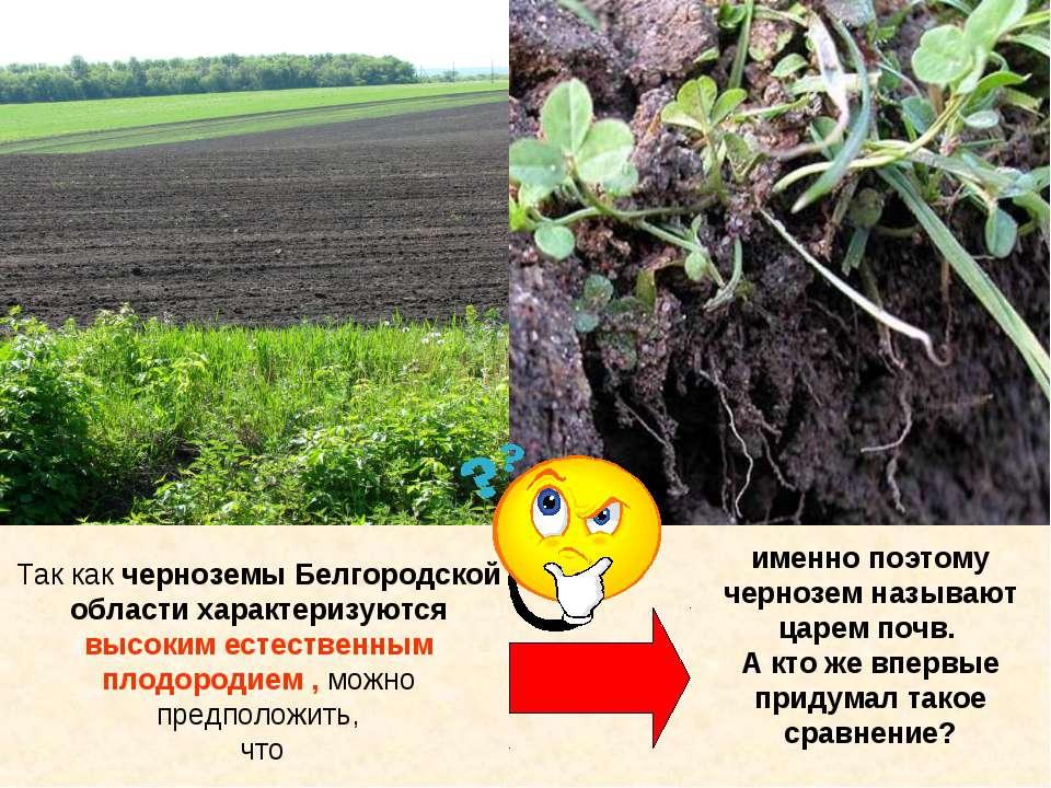 Так как черноземы Белгородской области характеризуются высоким естественным п...
