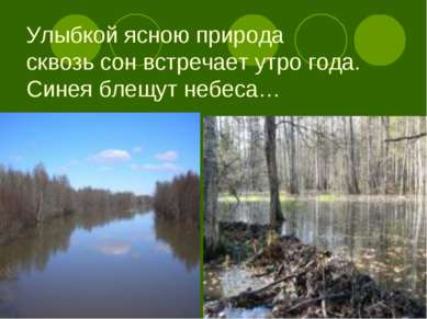 Улыбкой ясною природа сквозь сон встречает утро года. Синея блещут небеса…