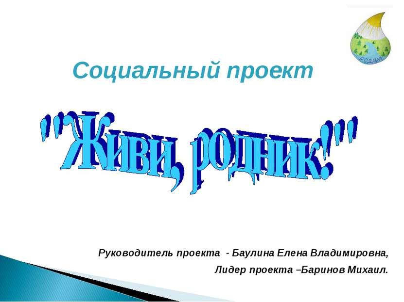 Социальный проект Руководитель проекта - Баулина Елена Владимировна, Лидер пр...