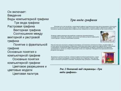 Он включает: Введение Виды компьютерной графики Три вида графики Растровая гр...