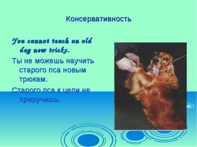 Консервативность You cannot teach an old dog new tricks. Ты не можешь научить...