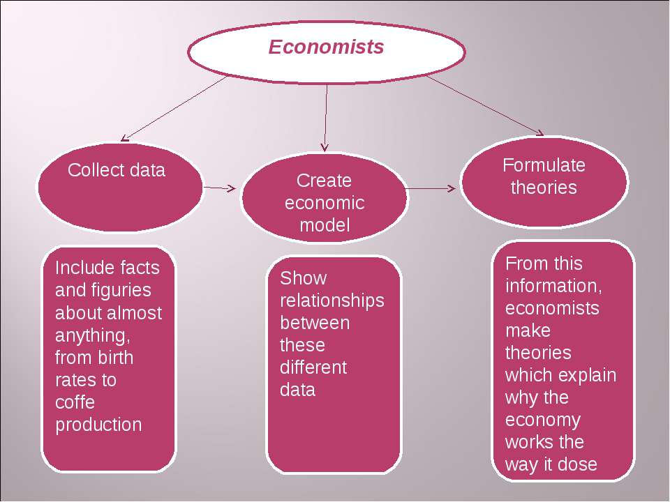 Economists Formulate theories Create economic model Collect data From this in...