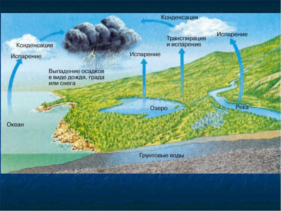 Осреднённая для всего земного шара скорость испарения составляет около 2,5 мм...