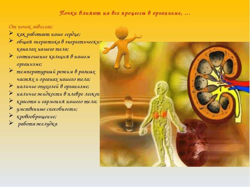 Почки влияют на все процессы в организме, … От почек зависит: как работает на...